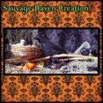 Sauvage Raven Creation