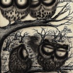 Sooty Owl Journal